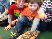 PreK- Visits with the Roger Williams Park Zoo Mobile