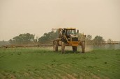 Broadcast Spraying of Pesticides