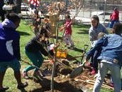 Student Council at Arbor Day Event
