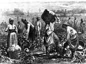 Los esclavos que trabajan