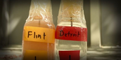 Flint, Michigan's water is dirty compared to Detroit's water