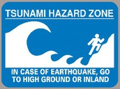 When ever caught in a tsunami get to the highest ground possible.