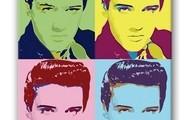 Elvis Presley Pop Art Warhol Canvas Print