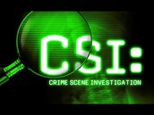 Role of FBI and CSI