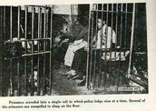 Picture of Overly Crowded Cell