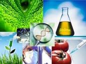 Las aplicaciones de la biotecnología?