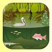 iBiome -- Wetland $2.99