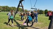 Pumpkin playground