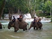Laos Tour Operator