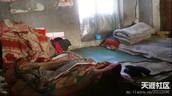 Living Conditions (Nursing Home)