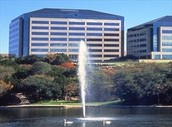 Northwest Austin- Arboretum