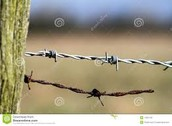 Barbed Wire Changing