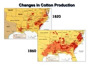Cotton Production from 1820-1860