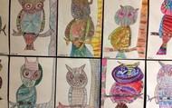 Patterned Owls