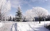 Mount Vernon Winter