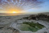 מעיינות ים המלח