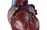 HEART COMPLAINTS
