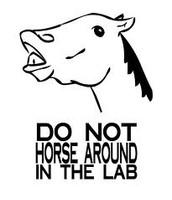 Never horseplay!