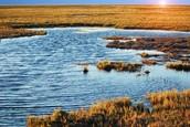 Wat is er gebeurd met het Aralmeer?