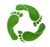 Ways to reduce carbon emissions