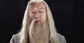 Gandolf (Protagonist) (Played by: Michael Gambon)