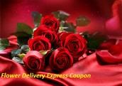 Intelligent Plans In Flower Delivery Express Coupon Trends