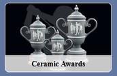 Ceramic Awards