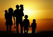 Foster Care Organizations: 101...