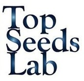 Top Seeds Labs