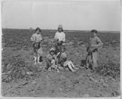 Child Labor in Kansas