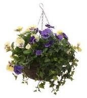 2015 Spring Plant Sale