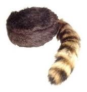 Trademark Raccoon Hat