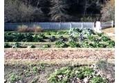 Free Slave Garden
