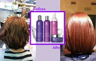 Pure Vibrance Hair Care