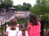 2nd Grade @ Zoo