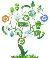 La polucion- El reciclaje