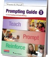 F&P Prompting Guide