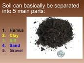 Soil's Main Parts