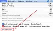 History & Search Bars