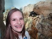 Penguins at Penguin Encounter @ SeaWorld