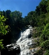 Visit Tijuca National Park