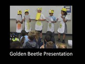Golden Beetle Presentation