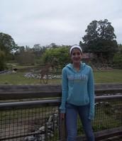 Me encantan los animales, especialmente las jirafas