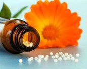 The Healthy Homeopath
