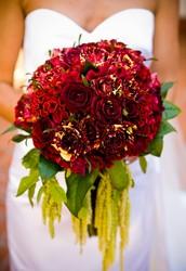 Cele mai frumoase flori pentru evenimente deosebite!