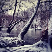 Winter in the Metroparks