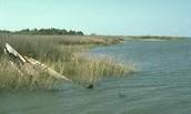 The Chesapeake Bay today