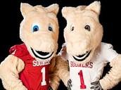 #1 College University Oklahoma