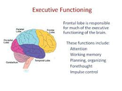 8 Pillars of Executive Function