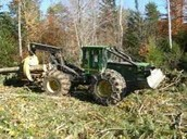 The Logging Industry